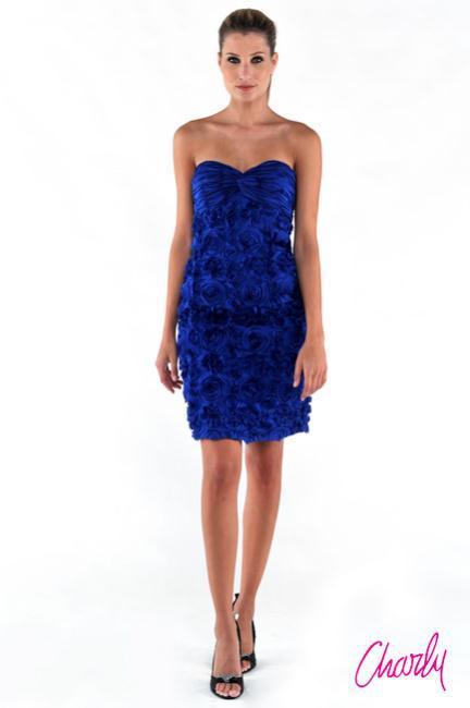 1319631286 a DSC 4805 - Charly Βραδινά και cocktail φορέματα